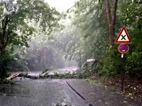 Auch im Bereich Bad Berleburg musste die Feuerwehr mehrfach ausrücken, um umgestürzte Bäume und abgebrochene Äste von den Fahrbahnen zu entfernen. (Foto: wirSiegen.de)