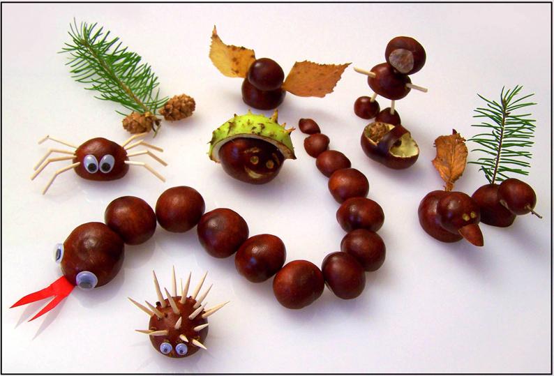 Die Frucht der Rosskastanie wird gerne auch zum herbstlichen Dekorieren und Basteln benutzt. Daraus lassen sich phantasievolle Tierfiguren herstellen. (Foto: knispeline/pixelio.de)